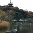横浜:三渓園