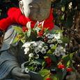 鎌倉:明月院・花想い地蔵