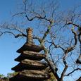 鎌倉:東慶寺にて