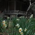 鎌倉:熊野新宮