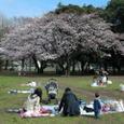 平塚総合公園