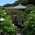 鎌倉:瑞泉寺