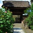 鎌倉:極楽寺