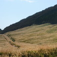 箱根:仙石原