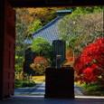 鎌倉:光則寺