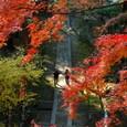 鎌倉:建長寺半僧坊
