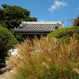 鎌倉:安養院