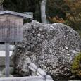鎌倉:鶴岡八幡宮(さざれ石)