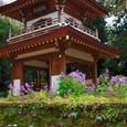 鎌倉:浄智寺