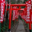 鎌倉:佐助稲荷神社