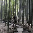 鎌倉:報国寺
